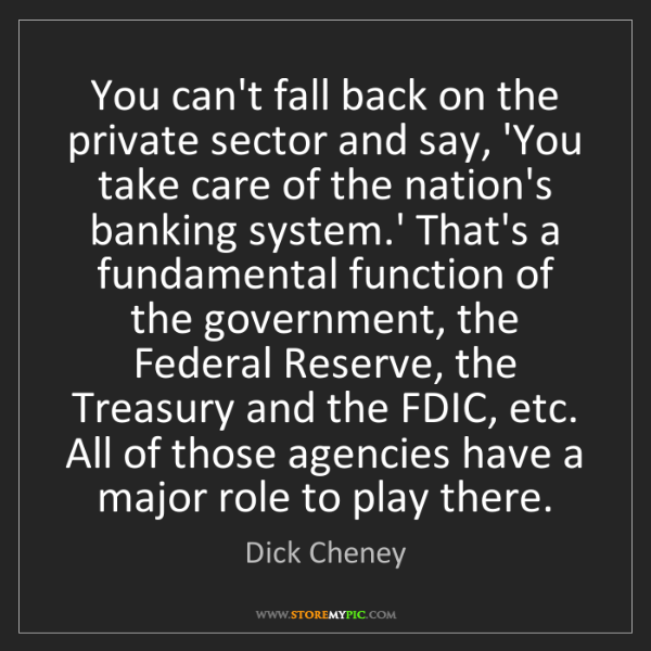 Dick Cheney: You can't fall back on the private sector and say, 'You...