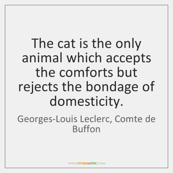 The cat is the only animal which accepts the comforts but rejects ...