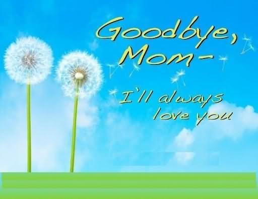 Goodbye mom ill always love you
