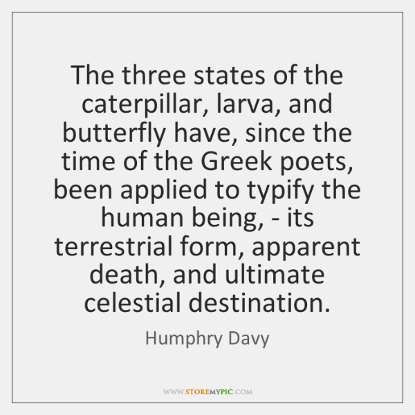 The three states of the caterpillar, larva, and butterfly have, since the ...