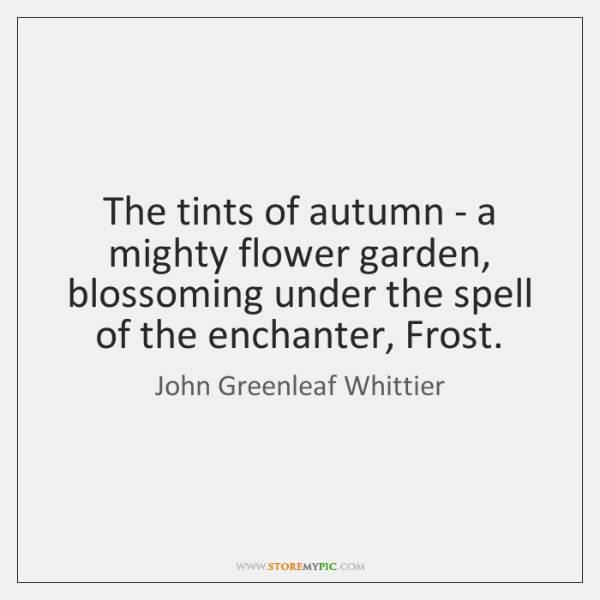 The tints of autumn - a mighty flower garden, blossoming under the ...