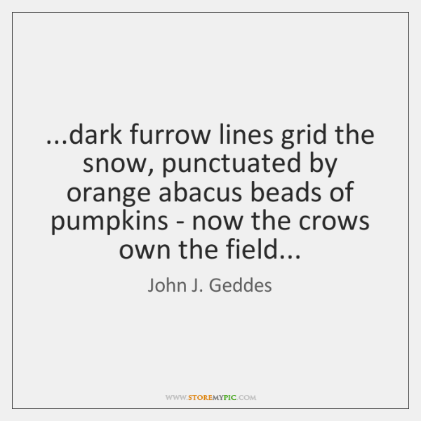...dark furrow lines grid the snow, punctuated by orange abacus beads of ...