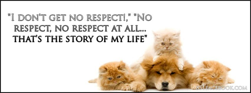 Animals Kitty Cat Dog Quote I Get No Respect Facebook Timeline Cover