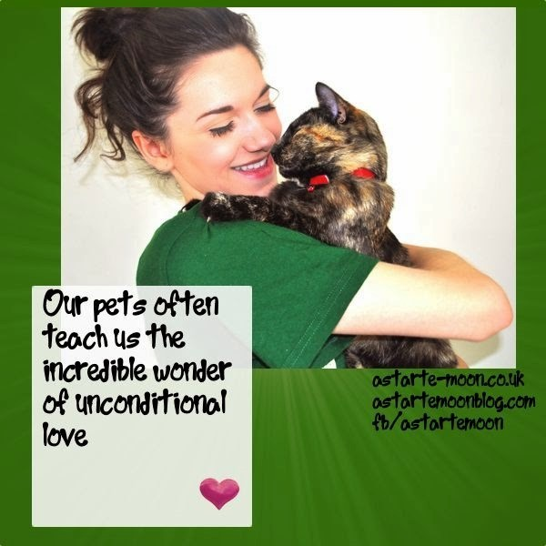 Our pets often teach us the incredible wonder of unconditional love