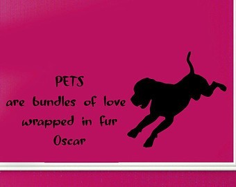 Petsn are bundles of love wrapped in fur oscar