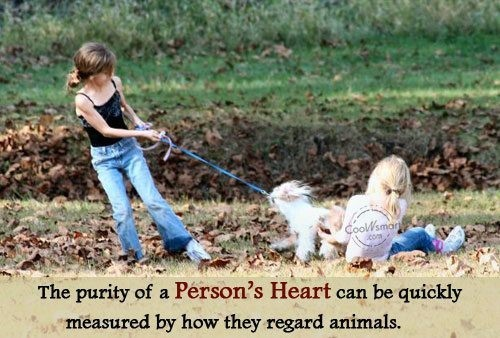 The purity of a persons heart can be quickly measured by how they regard animals