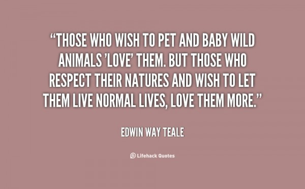 Those who wish to pet and baby wild animals love them but those who respect their natures