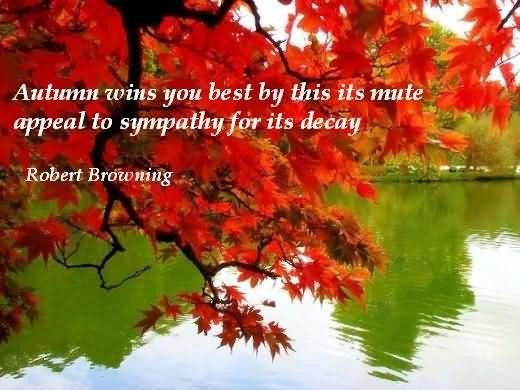 Autumn wins you best by this its mute appeal to sympathy for its decay robert brownin