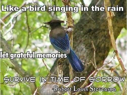 Like a bird singing in the rain let grateful memories survive in time of sorrow rober