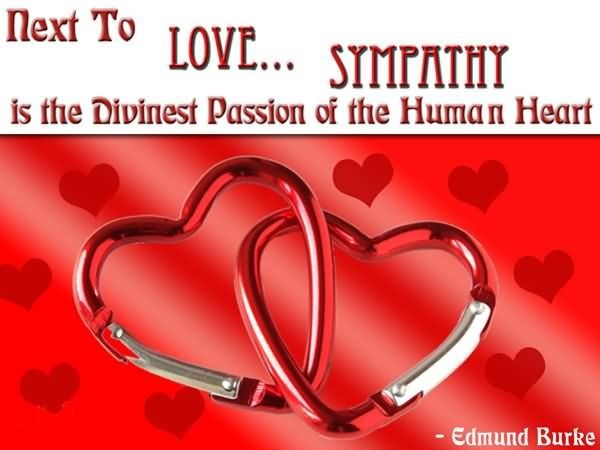 Next to love sympathy is the divinest passion of the human heart