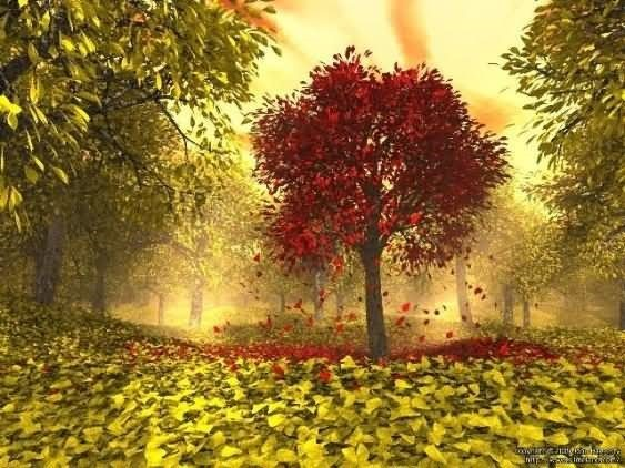 Wishing you beautiful autumn season