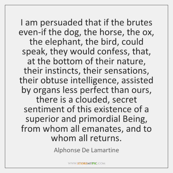 I am persuaded that if the brutes even-if the dog, the horse, ...