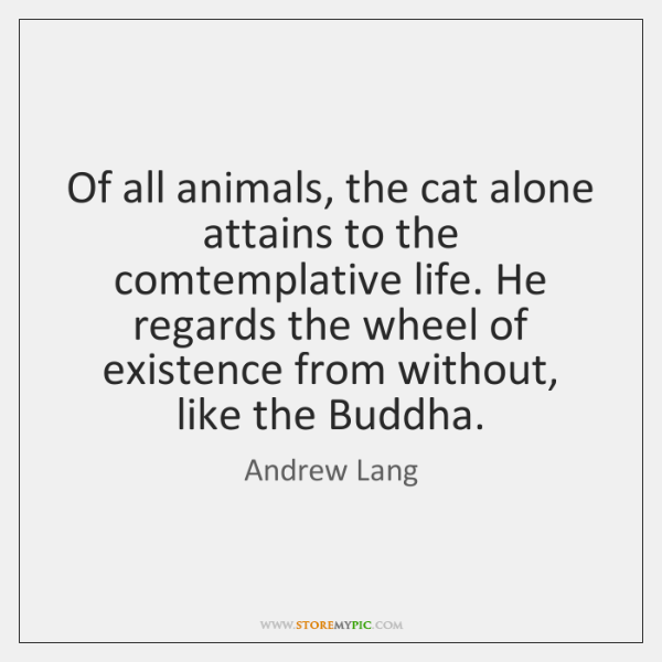 Of all animals, the cat alone attains to the comtemplative life. He ...