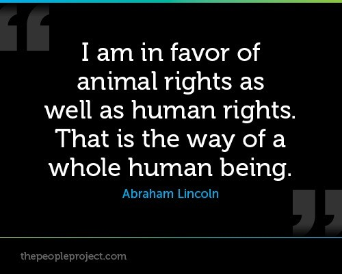 I am in favor of animal rights as well as human rights