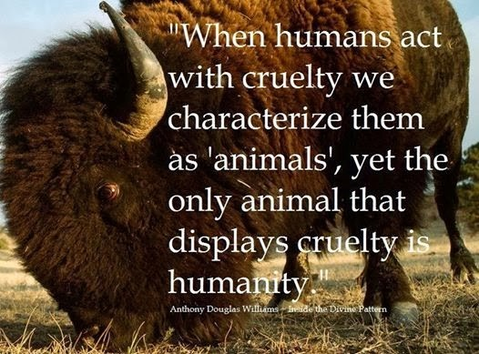 When humans act with cruelty we characterize them as animals yet the only animal that d