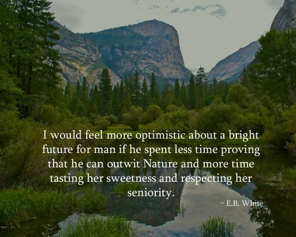 I would feel more optimistic about a bright future for man if he spent less time provi