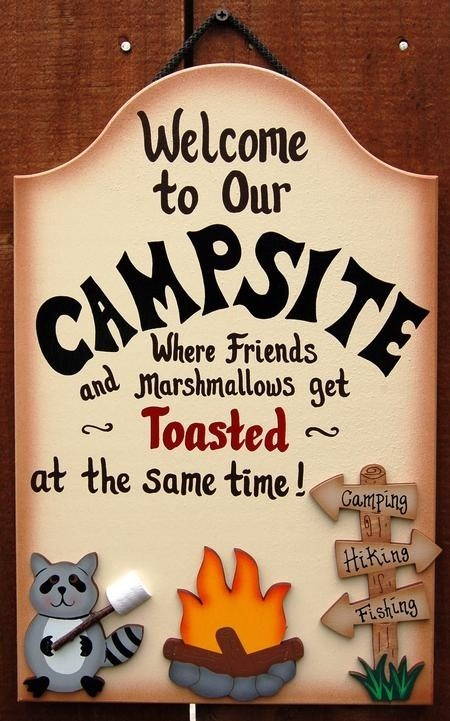 Welcome to our campsite where friends and marshmallows get toasted at the same time 00