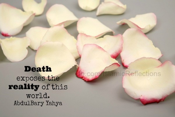 Death exposes the reality of this world abdulbary yahya