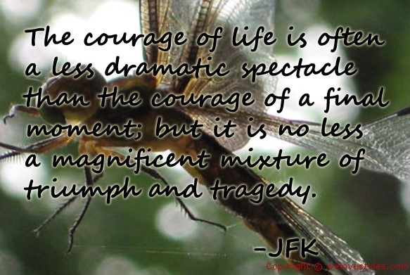 The courage of life is often a less dramatic spectacle than the courage of a final momen