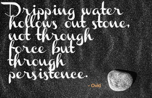 Dripping water hollows out stone not through force but through persistence