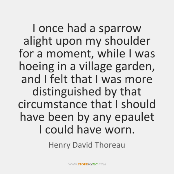 I once had a sparrow alight upon my shoulder for a moment, ...