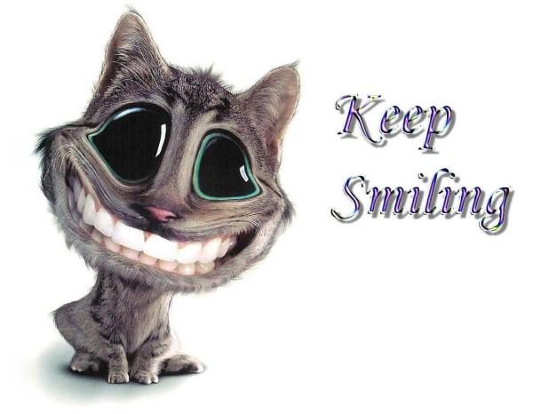 Keep smiling kitten