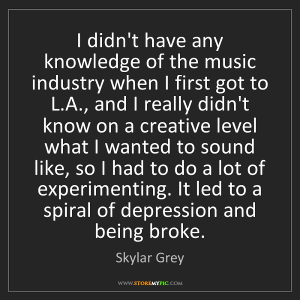 Skylar Grey: I didn't have any knowledge of the music industry when...