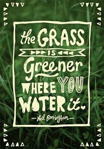 The grass greener where you water it