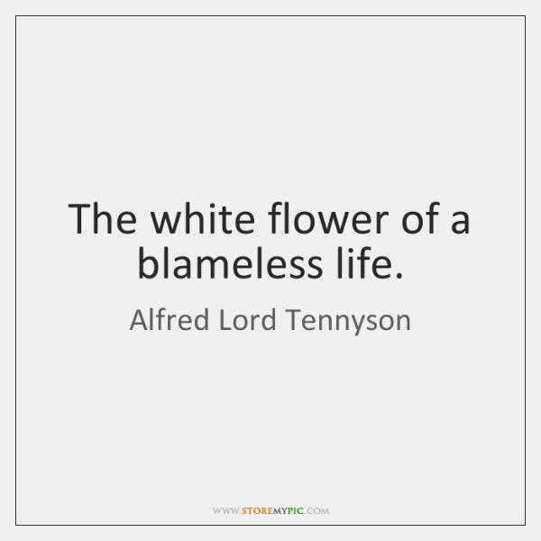 The white flower of a blameless life.