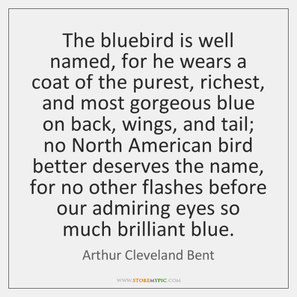 The bluebird is well named, for he wears a coat of the ...