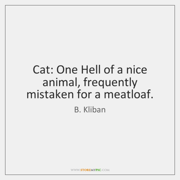 Cat: One Hell of a nice animal, frequently mistaken for a meatloaf.