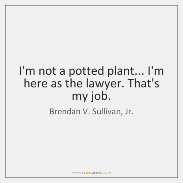 I'm not a potted plant... I'm here as the lawyer. That's my ...