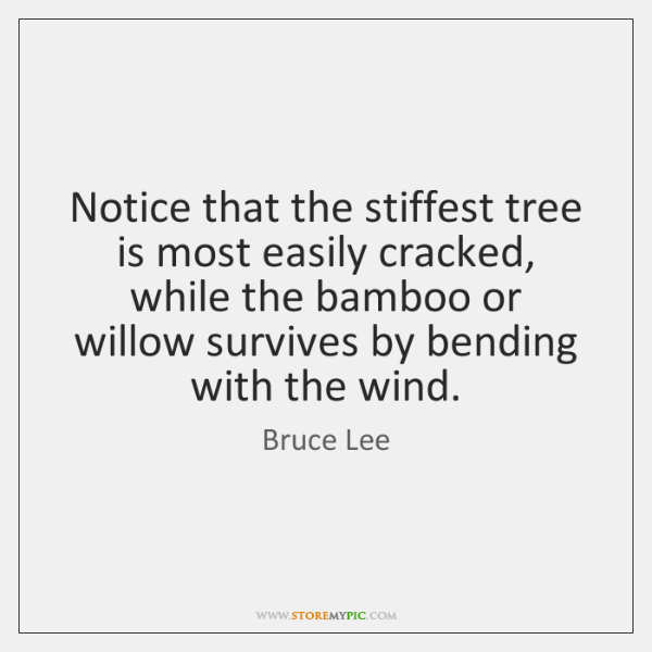 Notice that the stiffest tree is most easily cracked, while the bamboo ...