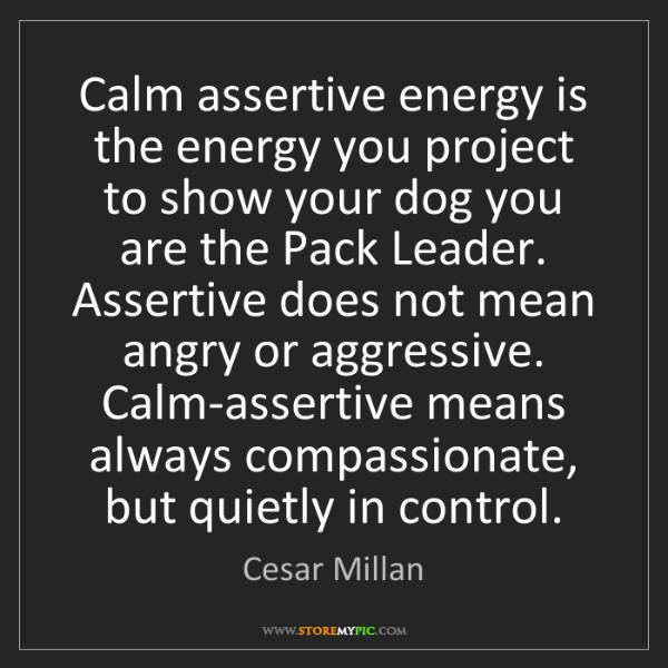 Cesar Millan: Calm assertive energy is the energy you project to show...