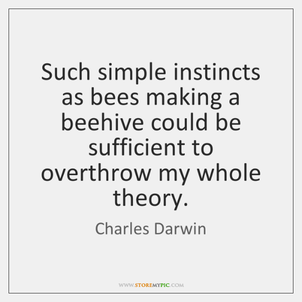 Such simple instincts as bees making a beehive could be sufficient to ...