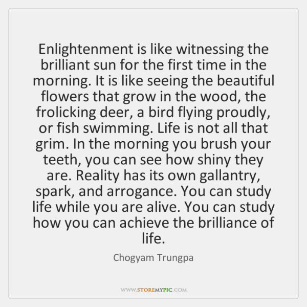 Enlightenment is like witnessing the brilliant sun for the first time in ...
