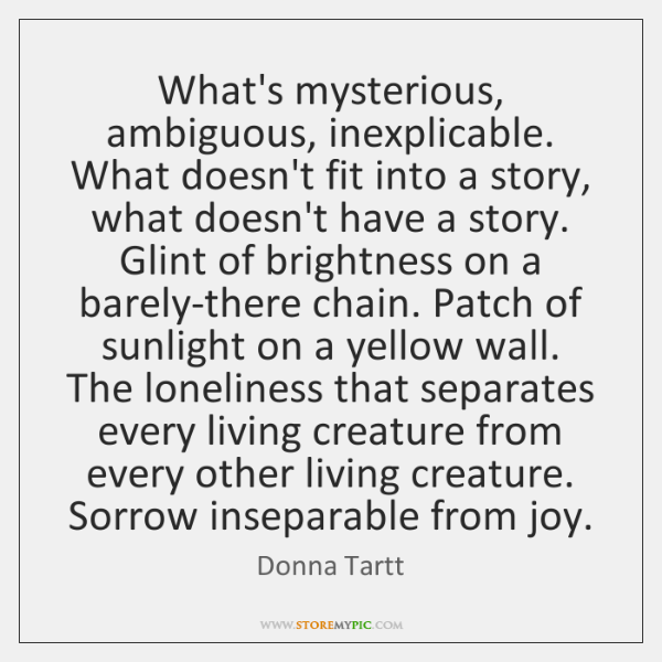 What's mysterious, ambiguous, inexplicable. What doesn't fit into a story, what doesn't ...