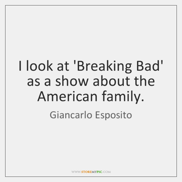 I look at 'Breaking Bad' as a show about the American family.