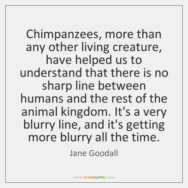 Chimpanzees, more than any other living creature, have helped us to understand ...