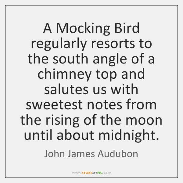 A Mocking Bird regularly resorts to the south angle of a chimney ...