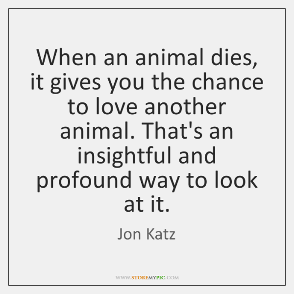 When An Animal Dies It Gives You The Chance To Love Another