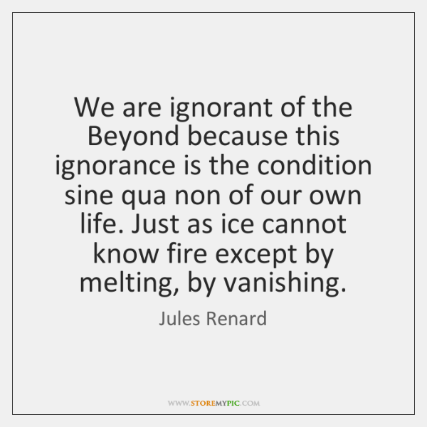 We are ignorant of the Beyond because this ignorance is the condition ...