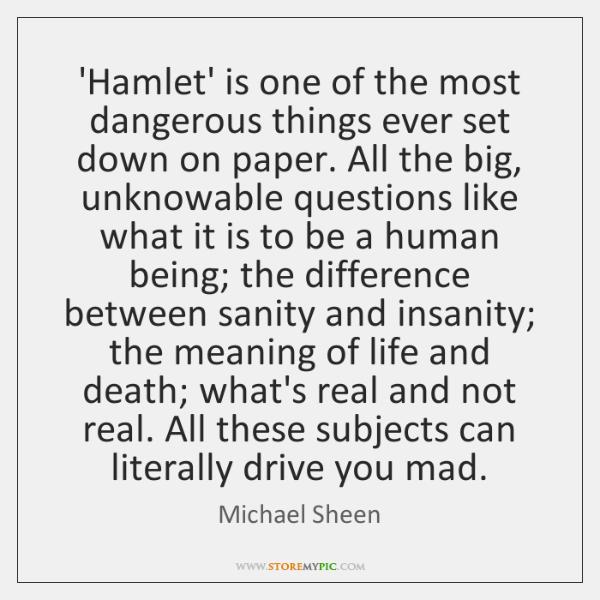 hamlet sanity vs insanity essay The sanity of hamlet essays: over 180,000 the sanity of hamlet essays, the sanity of hamlet term papers insanity and sanity in hamlet.