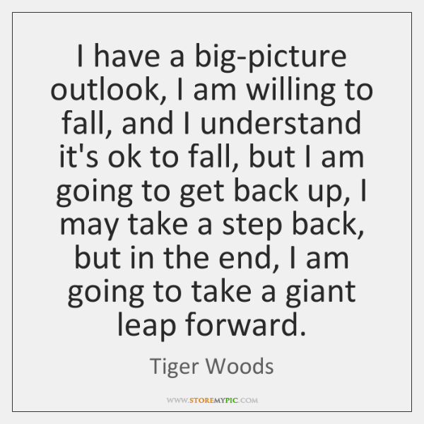 I have a big-picture outlook, I am willing to fall, and I ...
