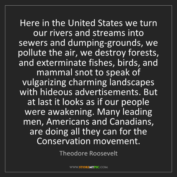 Theodore Roosevelt: Here in the United States we turn our rivers and streams...