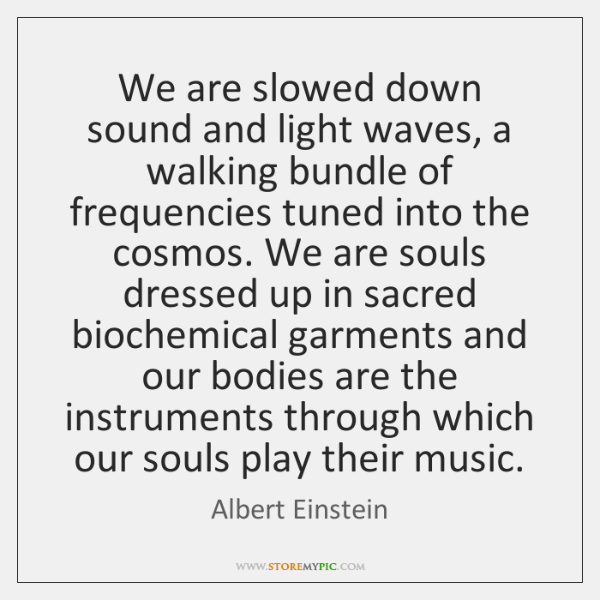 We are slowed down sound and light waves, a walking bundle of ...