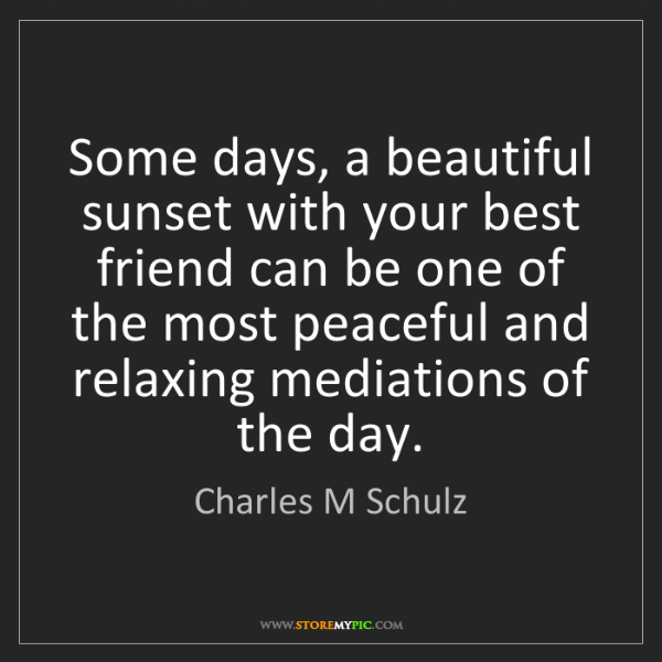 Charles M Schulz: Some days, a beautiful sunset with your best friend can...