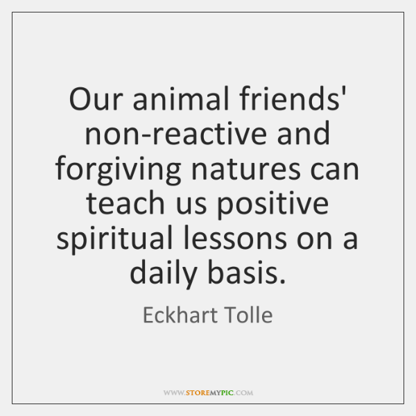 Our animal friends' non-reactive and forgiving natures can teach us positive spiritual ...