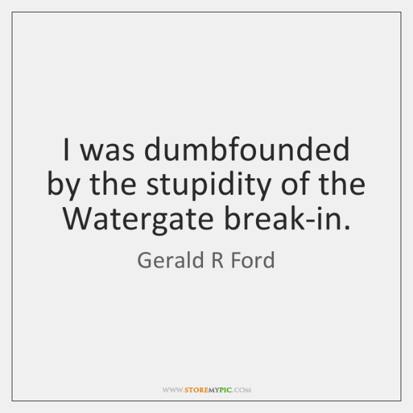 I was dumbfounded by the stupidity of the Watergate break-in.