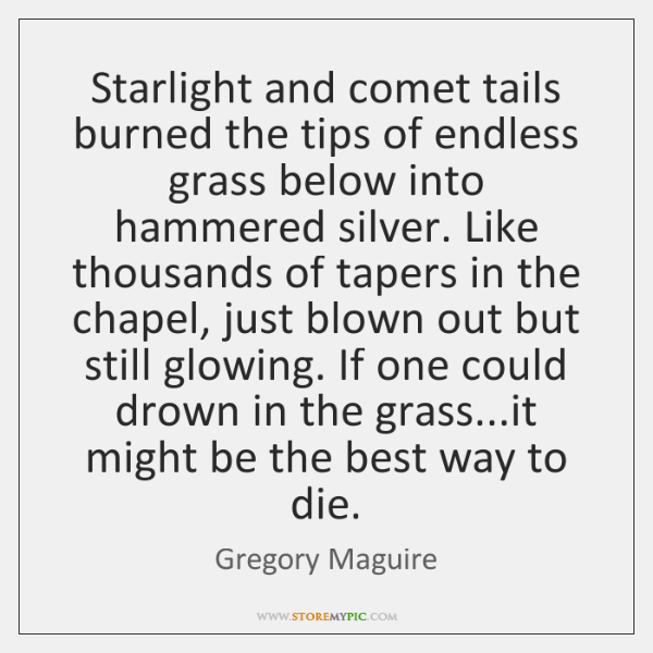 Starlight and comet tails burned the tips of endless grass below into ...